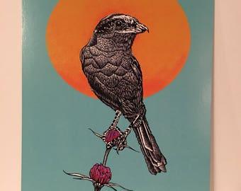 Shrike bird art print/nature/skeleton/vulture/desert/earth/flower/sun/tree/gift/skull/plant/macabre/horror/music/friend/food/loner/death/one
