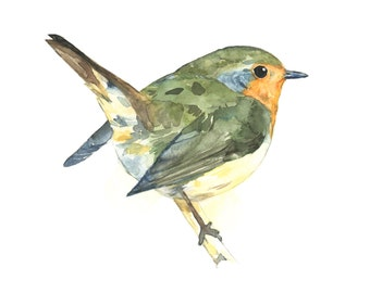 Robin watercolor painting - bird watercolor painting - 5x7 inch print - 0023