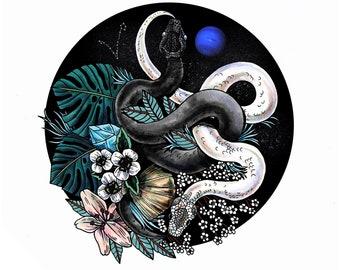 Pisces 8x10 Art Print