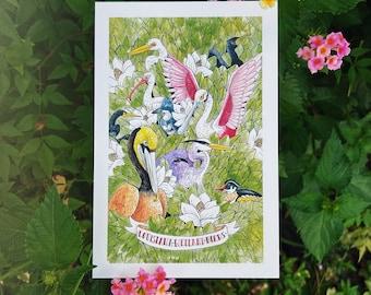 Louisiana Wetland Birds 4x6 postcard