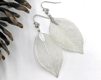 Stunning Real Leaf Earrings in Silver, Natural Leaf Earrings, Silver Leaf Earrings, Big Summer Earrings, Unique Nature Jewelry for Women