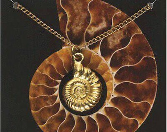Gold plated ammonite fossil pendant and chain.