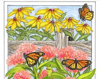 Monarch Butterfly Hand Illustration Note Cards
