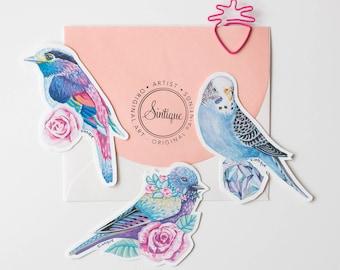 Set of 3 Bird Stickers, Cute Stickers, Cute Decals, Laptop Stickers, Vinyl Stickers, Waterproof Stickers, Cute Bird Sticker, Bird Stickers
