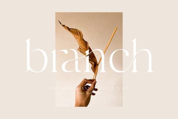 Branch - Modern Elegant Ligature Font