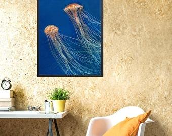 Yellow jellyfish wall art, yellow jellyfish blue water, printable modern wall art, minimal jellyfish art, jellyfish photo, jellyfish art