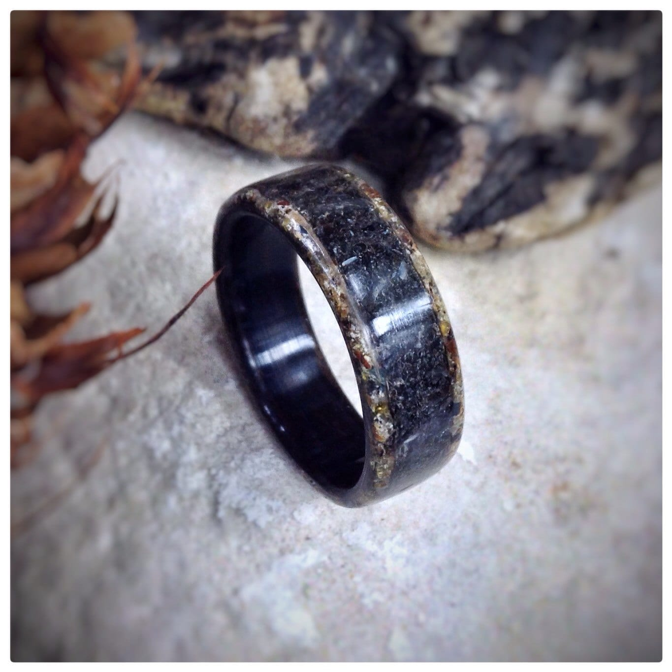 Wood Ring Sea Cat - Megalodon Tooth, Tigerseye & Ebony
