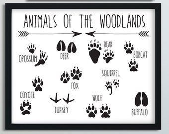 graphic about Printable Animal Footprints named Animal footprints Etsy