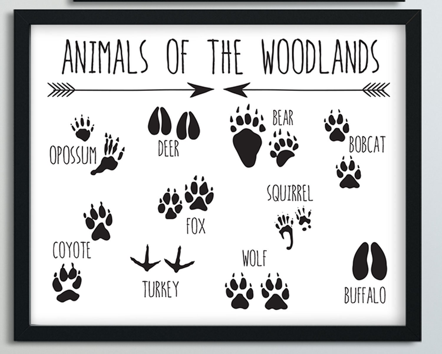 It is a picture of Gratifying Printable Animal Tracks