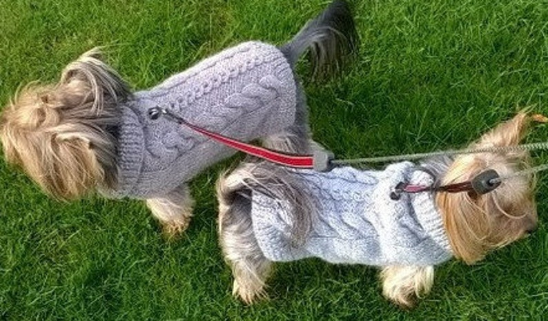 Knitting Pattern Cabled Fall Dog Sweater image 0