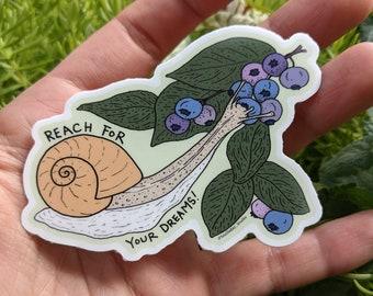 snail art vinyl sticker notebook laptop decal water bottle sticker cottagecore nature  forest art positivity