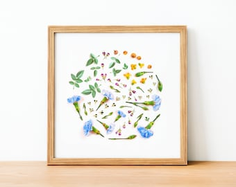 Hello Spring, Botanical prints, Spring decor, wall art, abstract wall art, Modern botanical print, made with flowers, spring gifts