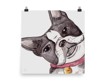 "hi!"" Boston Terrier print"