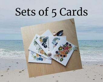 SET OF 5 CARDS: Beach Greeting Cards, Ocean Themed Cards, Sea Shell Watercolors, Cape Cod Art, Blank Card Set, Handmade Stationery