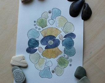 Watercolor Print, Shell Art, Coastal Home, Cape Cod Souvenir, Beach Decor, Ocean Inspired, Ocean Bathroom, Nautical Artwork
