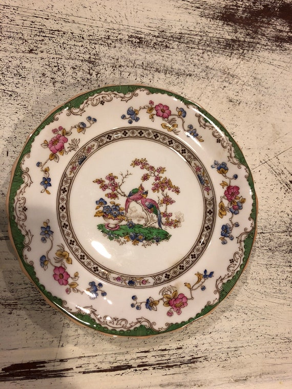 FREE SHIPPING-English-Spode Copelands -Eden-6 1/2 Inch-Dessert Plate