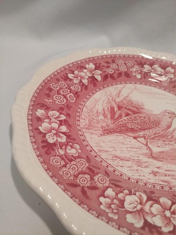 """Free Shipping- Vintage Spode Copeland England Wild Game Plates. Red Transfer Ware. 10"""" Diameter. """"Woodcock #9"""""""