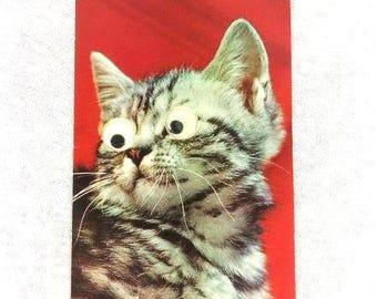 Vintage Cat Postcard Italian Cat Card Crazy Eyes Cat Postcard Cat Postcard Collectible Postcard
