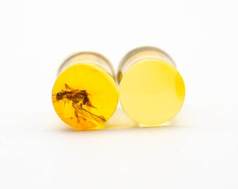 Mexican Amber Ear Plugs with Insect Inclusion 0.9 g,  7 mm