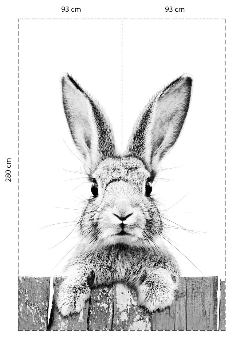 Постер с зайцами