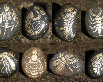 Painted Fossil Rock Magnets: Land Animals - Gold, Paint, Handmade, OOAK, Unique, Skeleton, Bones, Fridge, Accessory, Animal, Decoration