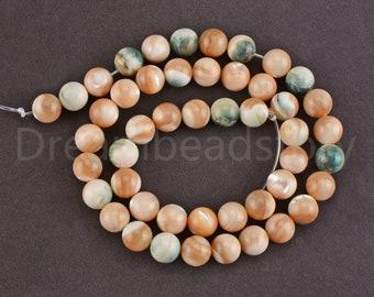 4 Pieces  Shell  Coin  Bead  Spacer  Semiprecious Stone