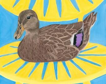Duck Art Print, Memorial Union Terrace Female Mallard Duck Art, UW Madison Wisconsin Gift - Fine Art Giclee Print of an Original Pawstel