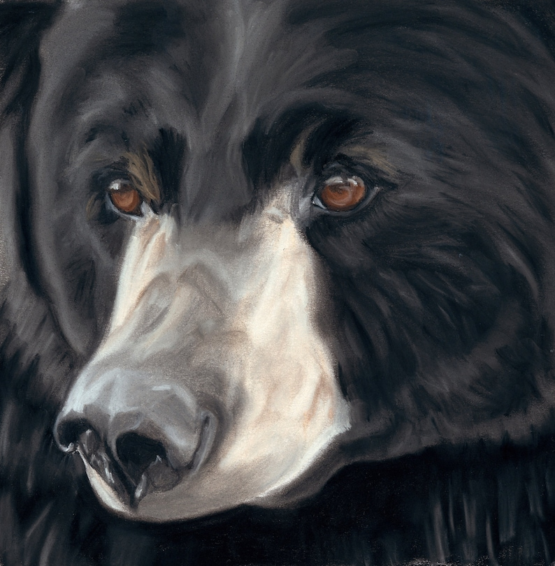 Black Bear Art Print Wildlife Art Cabin Decor Animal Lover image 0