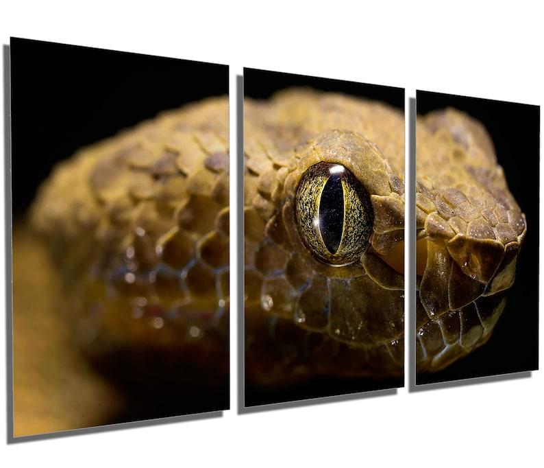 Metal Prints Metal HD aluminum prints home wall decor interior design Viper Snake Head Wall Art Yellow -3 Panel split Triptych