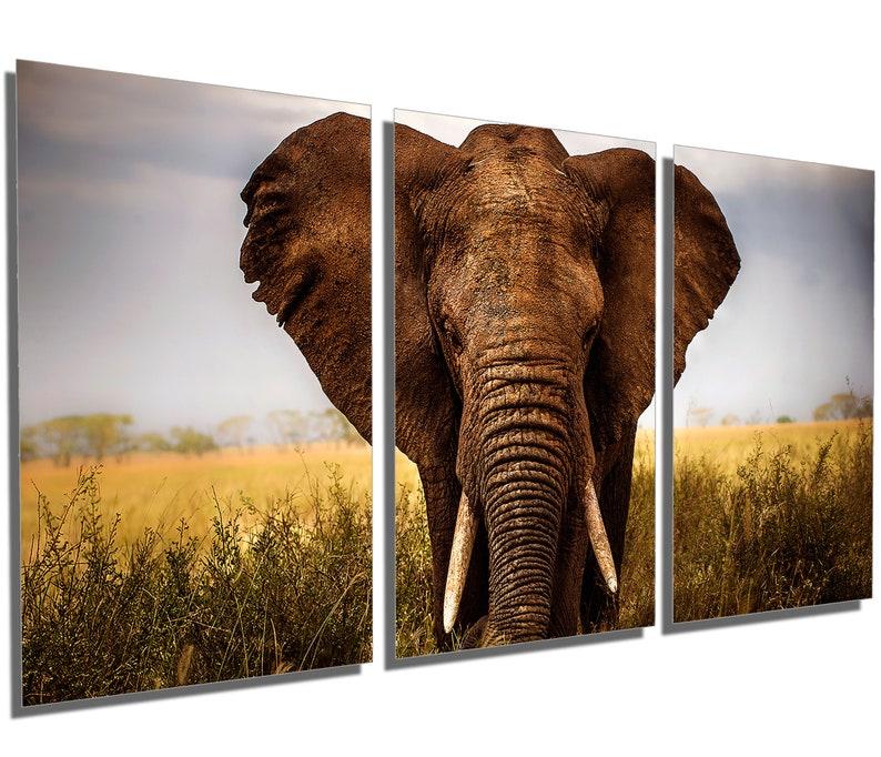 Giant Elephant Wall Art interior design. 3 Panel split wall decor Triptych Metal Prints HD Metal aluminum prints home decor