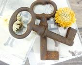Keys - Old keys - Set of 2 French keys - Iron keys - Skeleton keys - Rusted keys - vintage - Country house - France - Rustic keys