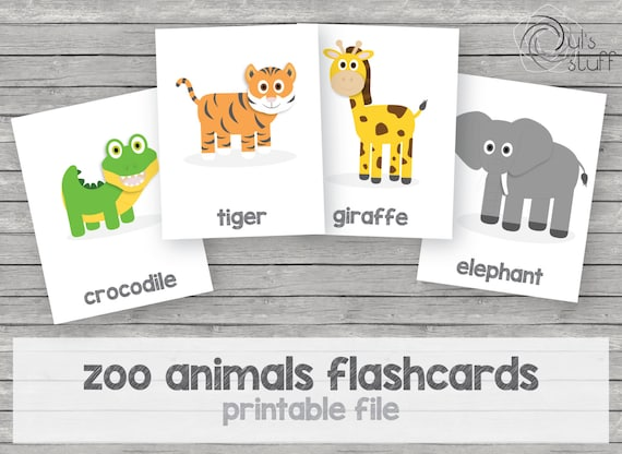 photo about Zoo Animal Flash Cards Free Printable identified as Printable small children zoo pets flashcards, english through Duls