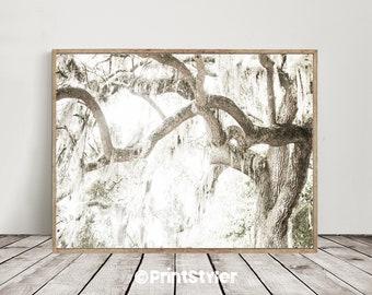 Tree Print Nature Print Forest Print Forest Wall Art Forest Art Tree Wall Art