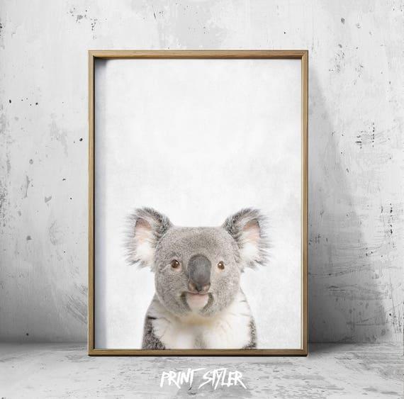 Koala Beer Koala Print Bear Poster Kaola Art Dierlijke Print Etsy