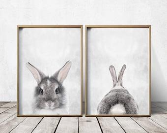 Wall Art Nursery - Bunny Rabbit Print - Bunny Rabbit Wall Art - Bunny Rabbit Poster - Bunny Rabbit Art - Bunny Rabbit Poster - Animal Prints