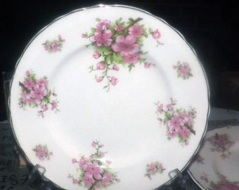 Early mid-century Arthur Wilkinson   Royal Staffordshire 355 salad or side plate made in England. Sold individually.