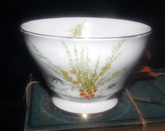 Mid-century (1950s) Royal Stafford Broom pattern 6567 open, footed sugar bowl. Hand-decorated orange, yellow wildflowers, gold edge.