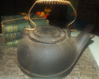 Antique (late 1800s) cast iron kettle | teapot with removable metal handle. Attributed to Terstegge Gohmann Co. New Albany USA.