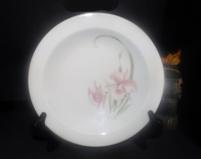 Mid-century CP Colditz B83 rimmed soup bowl. Colditz Porzellan made in GDR | Germany. Sold individually.