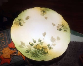 Antique (late 1800s) MZ Austria | Zdekauer | LS&S | Lewis Strauss hand-painted cake | cookie serving plate. Graduated greens, acorns.