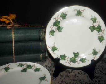 Vintage (1960s) Colclough England Ivy Leaf 8143 bread-and-butter, dessert, or side plate. Green ivy, white ground, scalloped gold edge.