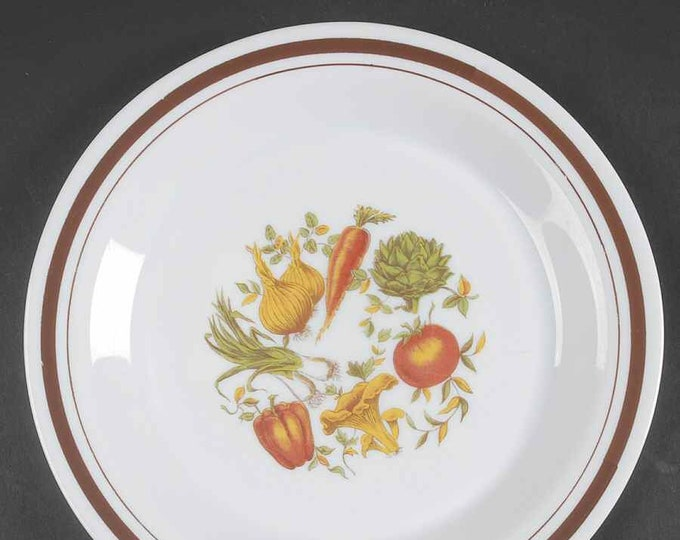 Vintage (1980s) Arcopal France ARP52 Fresh Vegetables salad | side plate. Brown bands, fall vegetables, carrots, onions, artichoke, tomato