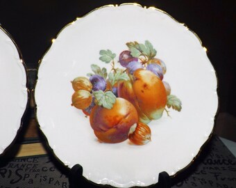 Pair of (1970s) Schumann Arzberg Bavarian fruit plates. Embossed perimeter, scalloped gold edge. Plums, grapes, nuts.