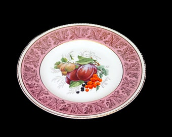 Mid century Simpsons Potters dinner plate. Pink rim inset gold fiigree, fruit and nuts in center. Solian Ware ironstone made in England.
