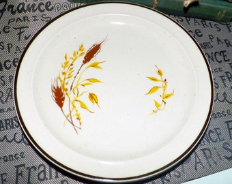 Pair of vintage (1980s) Anchor Hocking | Anchor Dinnerware Kansas pattern rimmed salad | dessert plates. Made in Japan.