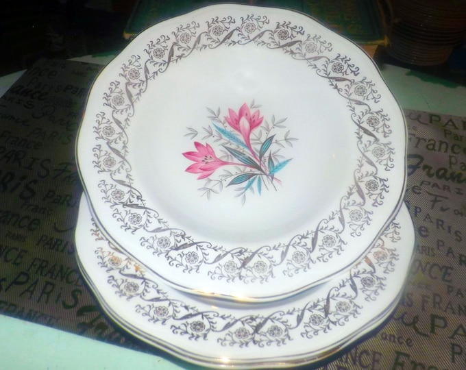 Mid-century (early 1950s) British Anchor Pottery pattern 6001 rimmed soup bowl. Filigree, florals. Regency ironstone.