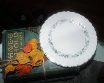 Mid-century (1950s) Johnson Brothers JB482 bread-and-butter, dessert, or side plate. Blue morning glories. Snowhite Regency ironstone.