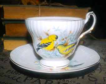 Vintage (1970s) Rosina | Queen's China England Birds of America Series 1 cup and saucer | tea set. American Goldfinch. Gold edge.