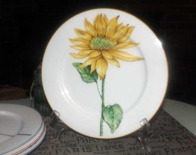 Vintage Flower Power | Flower Show large dinner plate | charger. Central large flower, colored trim.