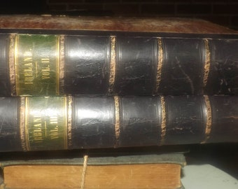 Pair of antique (1846) first-edition books Ireland It's Scenery, Character. Mr & Mrs S.C. Hall. Published London, England Virtue and Co.